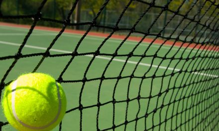 Job Vacancies – Tennis Ireland